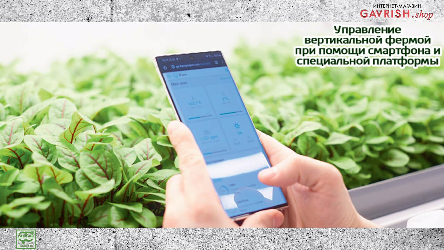 Управление вертикальной фермой при помощи специальной платформы. Фото: Ника Селезнева